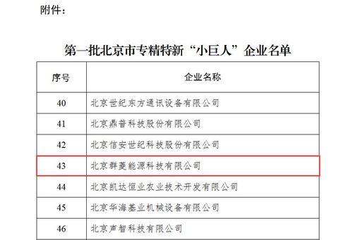 """第一批北京市专精特新""""小巨人""""企业2.jpg"""